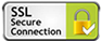 Site seguro com criptografia (SSL)